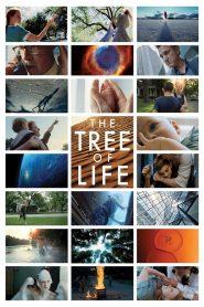ต้นไม้แห่งชีวิต (The Tree Of Life)