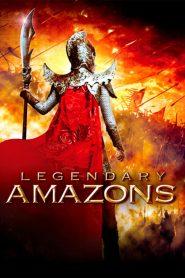 ศึกทะลุฟ้า ตระกูลหยาง (Legendary Amazons)