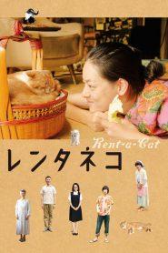 แมวเช่าอลเวง (Rentaneko) Rent-a-Cat