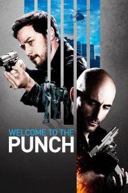 ย้อนสูตรล่า ผ่าสองขั้ว (Welcome to The Punch)