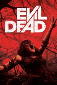 ผีอมตะ (Evil Dead)