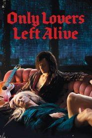 แวมไพร์อันเดอร์กราวนด์ (Only Lovers Left Alive)