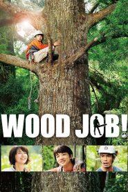 แดดส่องฟ้าเป็นสัญญาณวันใหม่ (Wood job)