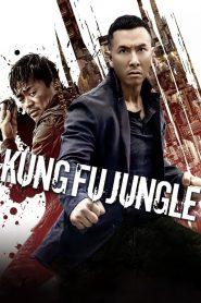 คนเดือดหมัดดิบ (Kung Fu Jungle)