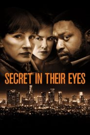 ลับ ลวง ตา (Secret in Their Eyes)