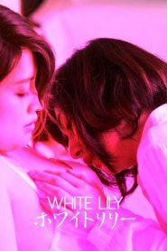 ไวท์ลิลลี่ (White Lily)