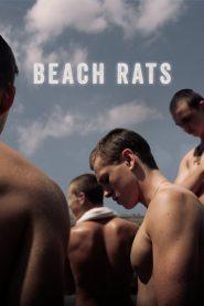 เพศสภาพกับการเปลี่ยนผ่าน (Beach Rats)