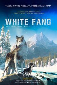 ไอ้เขี้ยวขาว (White Fang)