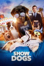 โชว์ด็อก (Show Dogs)