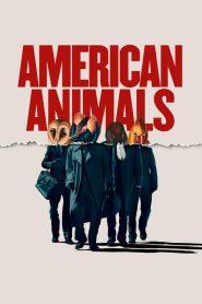 รวมกันปล้น อย่าให้ใครจับได้ (American Animals)
