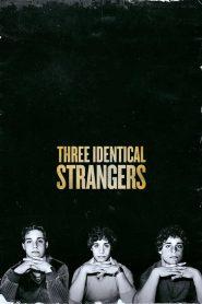 สารคดี Three Identical Strangers