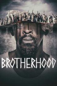 Brotherhood (ผ่าองค์กรบาป)