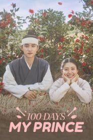 100 Days My Prince