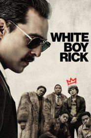 จอมทรหด (White Boy Rick)