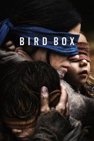 มอง อย่าให้เห็น (Bird Box)