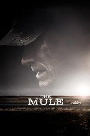 เดอะ มิวล์ (The Mule)