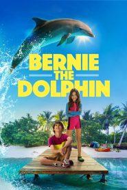 เบอร์นี่ โลมาน้อย หัวใจมหาสมุทร (Bernie The Dolphin)