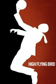 สุดเพดานฟ้า (High Flying Bird)
