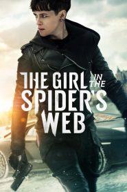 พยัคฆ์สาวล่ารหัสใยมรณะ (The Girl in the Spider's Web)