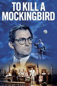 ผู้บริสุทธิ์ (To Kill a Mockingbird)