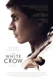 เต้นเพื่อฝัน วันอิสระภาพ (The White Crow)