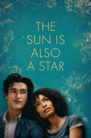 เมื่อแสงดาวส่องตะวัน (The Sun Is Also a Star)