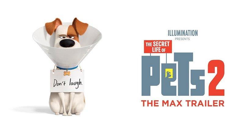 เรื่องลับแก๊งขนฟู ภาค 2 (The Secret Life of Pets 2)