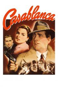 คาซาบลังกา (Casablanca)