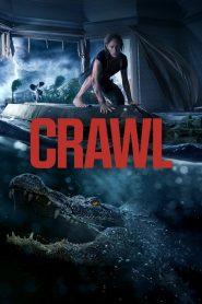 คลานขย้ำ (Crawl)