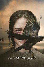ล่าแค้นแดนเถื่อน (The Nightingale)