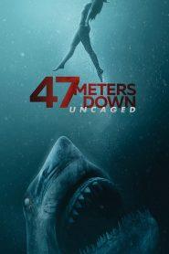 47 ดิ่งลึกสุดนรก (47 Meters Down: Uncaged)