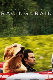 อุ่นไอหัวใจตูบ (The Art of Racing in the Rain)