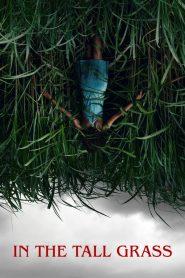 พงหลอนมรณะ (In the Tall Grass)