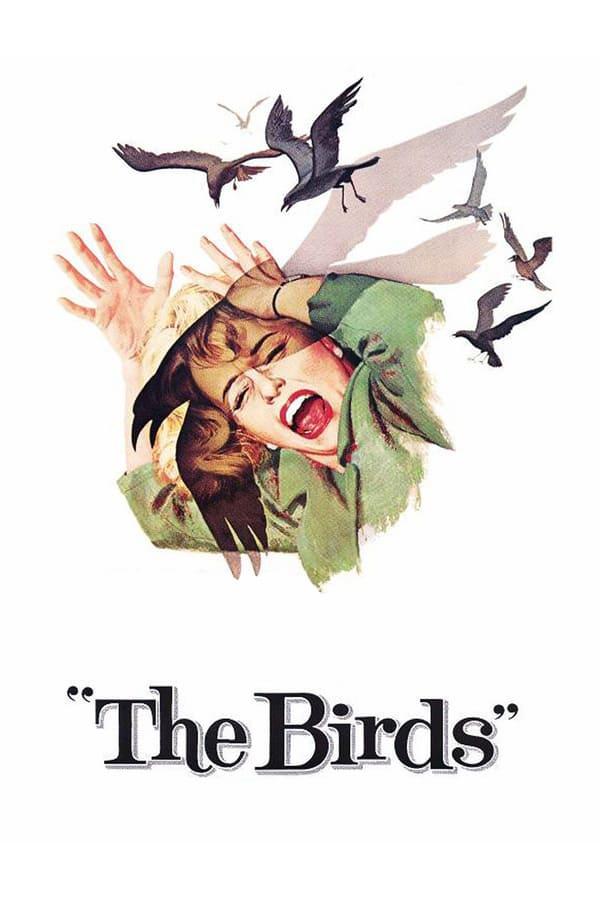 นก นก นก (The Birds)