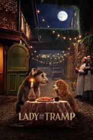 ทรามวัยกับไอ้ตูบ (Lady and the Tramp)