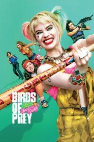 ทีมนกผู้ล่า กับฮาร์ลีย์ ควินน์ ผู้เริดเชิด (Birds of Prey)