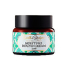 Earth s recipe moisture bound cream