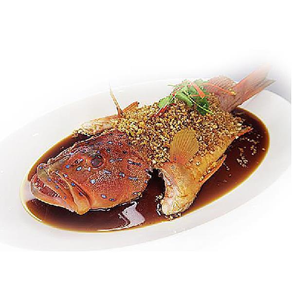 鱼 - FISH