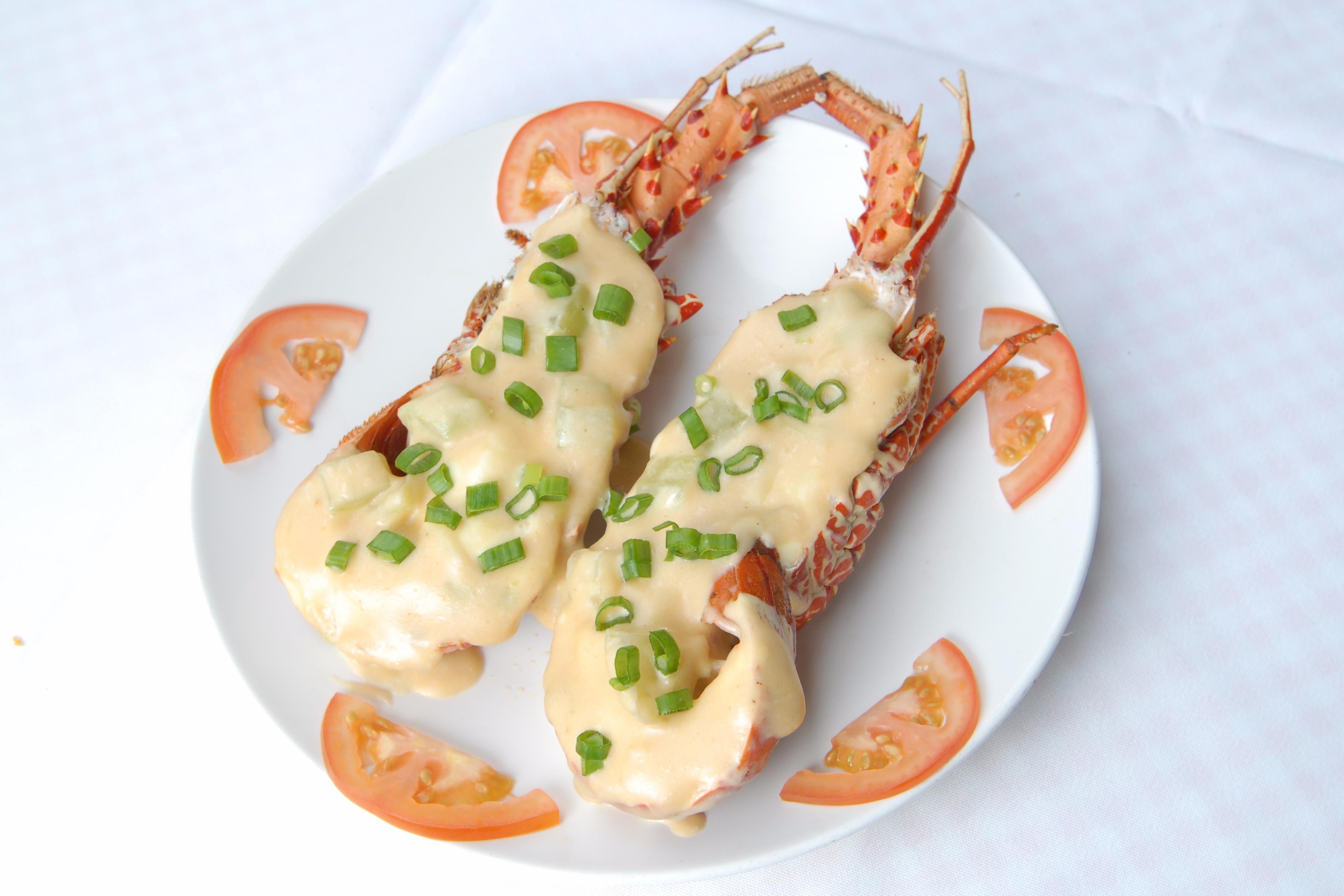 Lobster 龙虾类