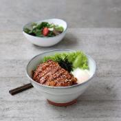 Teriyaki Chicken Rice Bowl Set