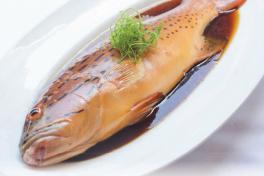 鱼 Fish