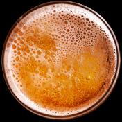 Beer And Sake 啤酒和清酒
