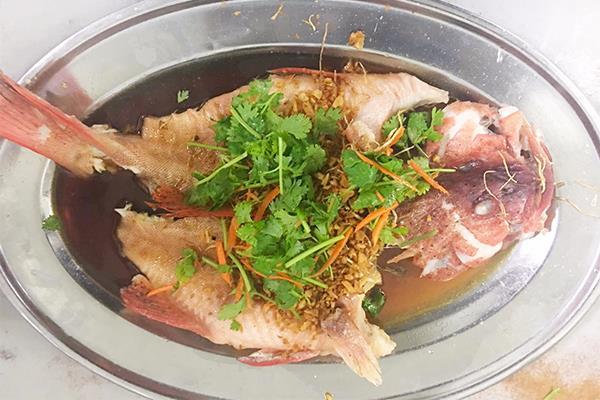 鱼类 FISH