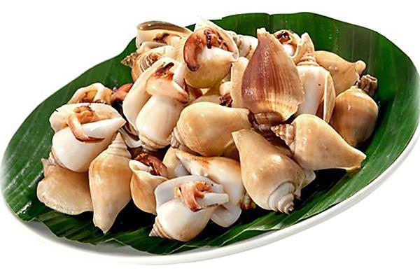 CNY - 贝壳 (蚝,蛤,蚌) Clams / Oyster / Cockles / Mussels