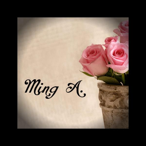 Ming Adisugata