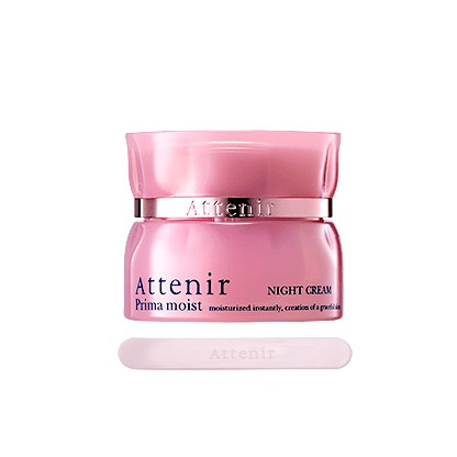 Attenir PRIMA MOIST – NIGHT CREAM