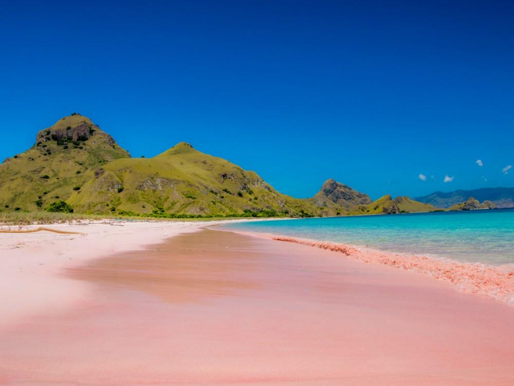 Destinasi Wisata Warna Pink - Pink Beach