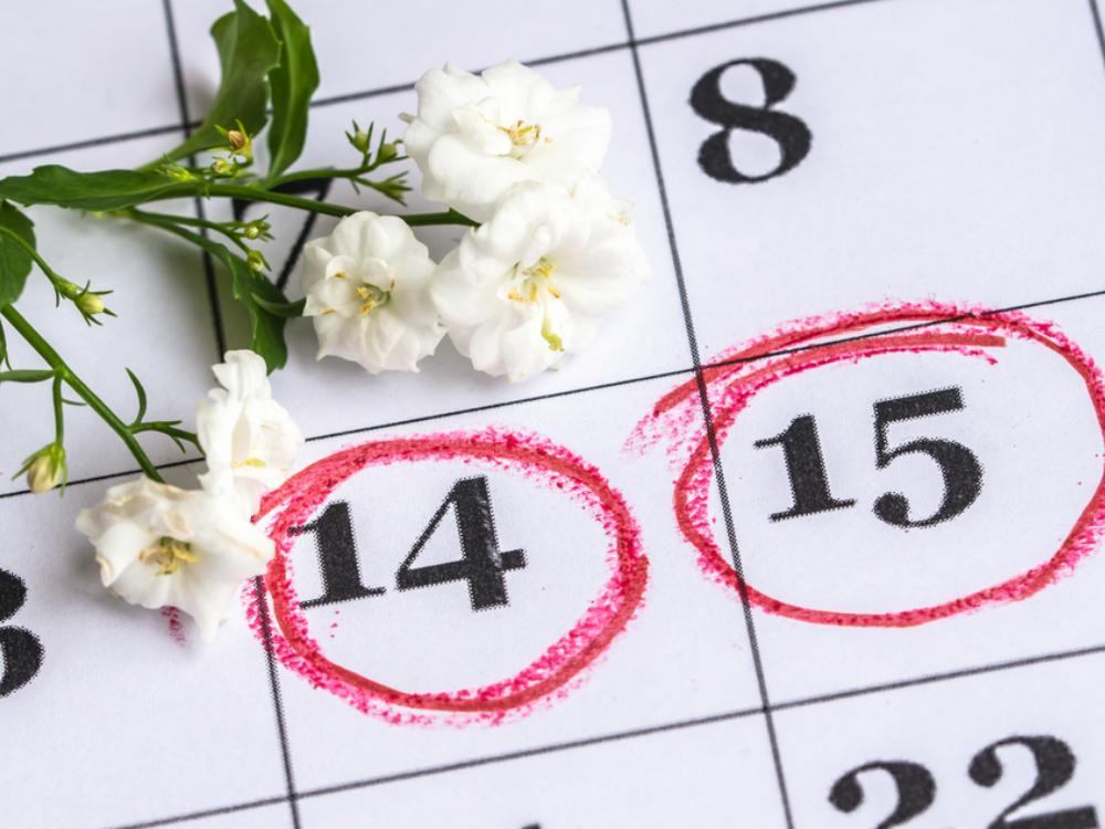 Pentingnya Mencatat Siklus Menstruasi - Cover