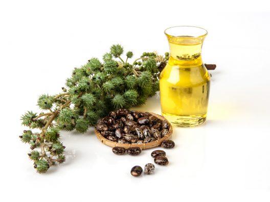Manfaat Castor Oil