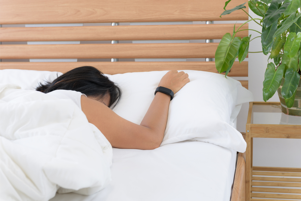 Tanaman di Dalam Kamar Tidur